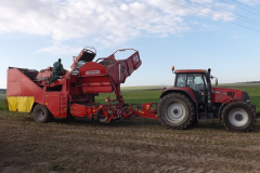 Traktor při sklizni